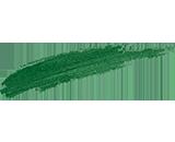 Vivid green [300]