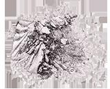 Silver Star [700]