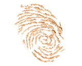 Delikatna i lekka tekstura łatwo stapia się ze skórą przy aplikacji palcami lub gąbeczką. Zawiera dopasowujące się do skóry bio-pigmenty i rozświetlające drobinki pudru, które pomagają odświeżyć Twój makijaż!